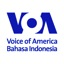 Ikona pakietu VOA Indonesia